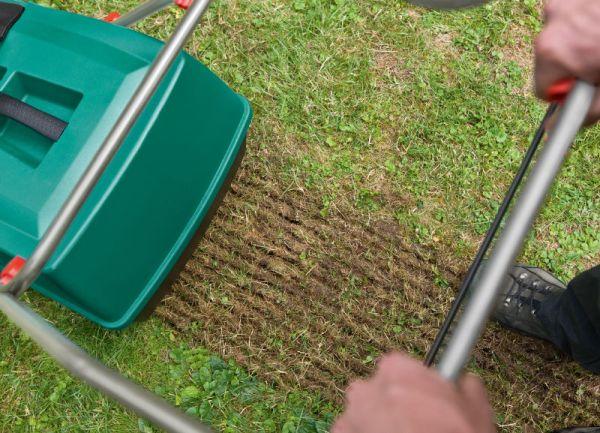 comment scarifier sa pelouse 1
